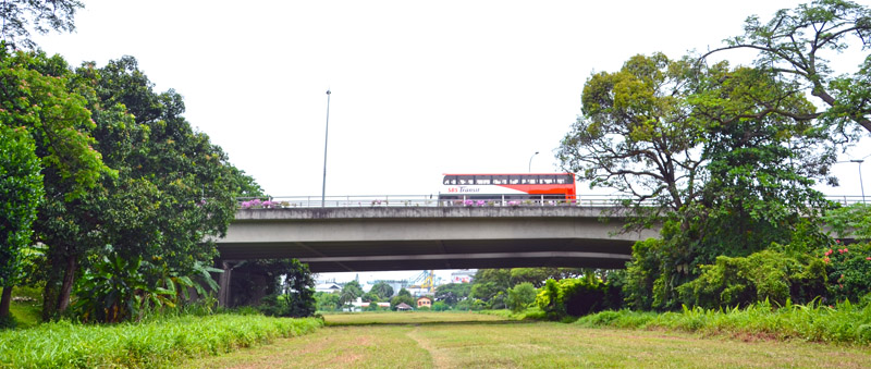 Destination Bridge