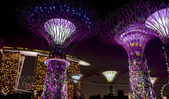 Garden By The Bay Night day and night with flora and fauna at gardensthe bay | hungry