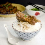 Fermented Beancurd Pork Ribs 2